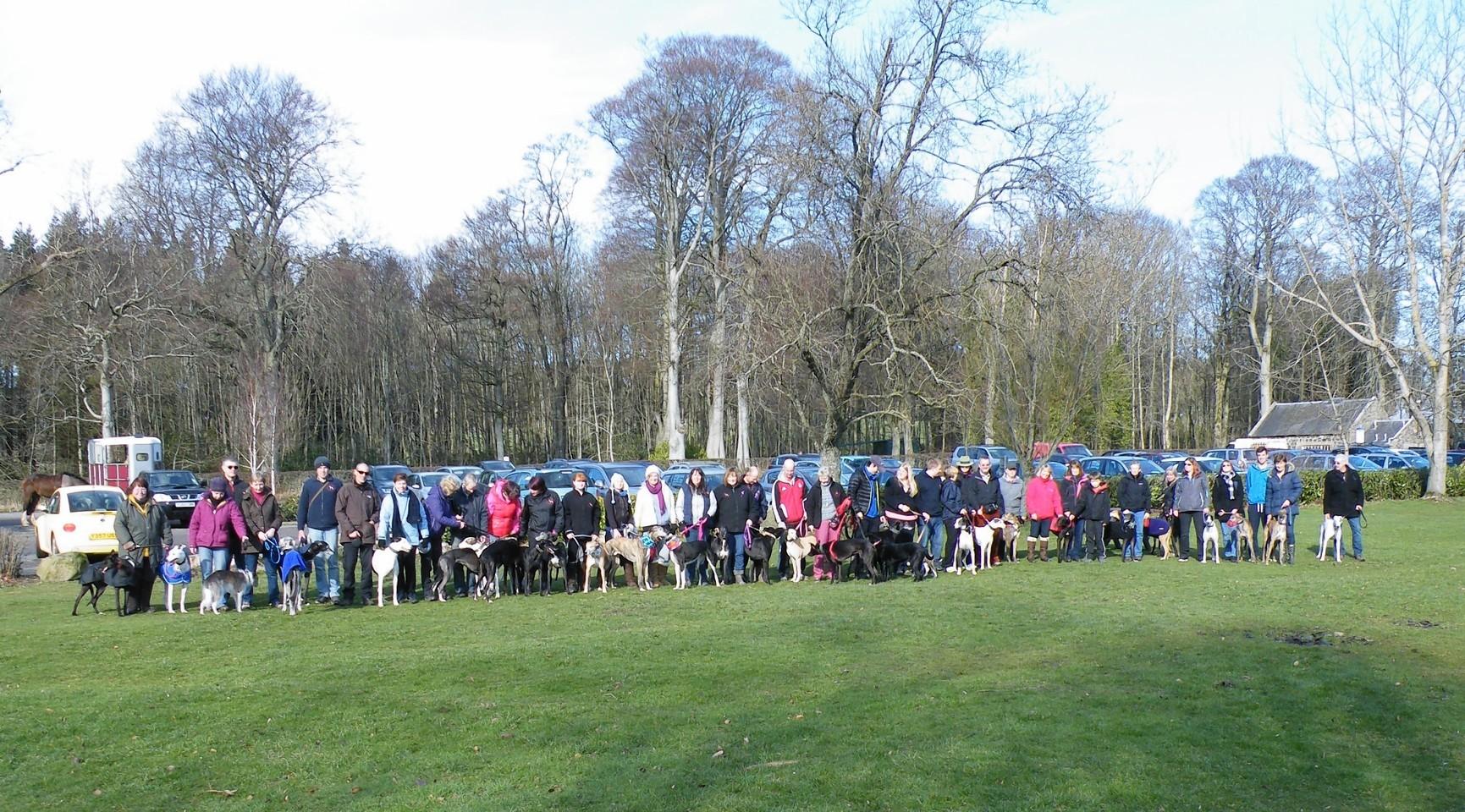 Last year's greyhound walk