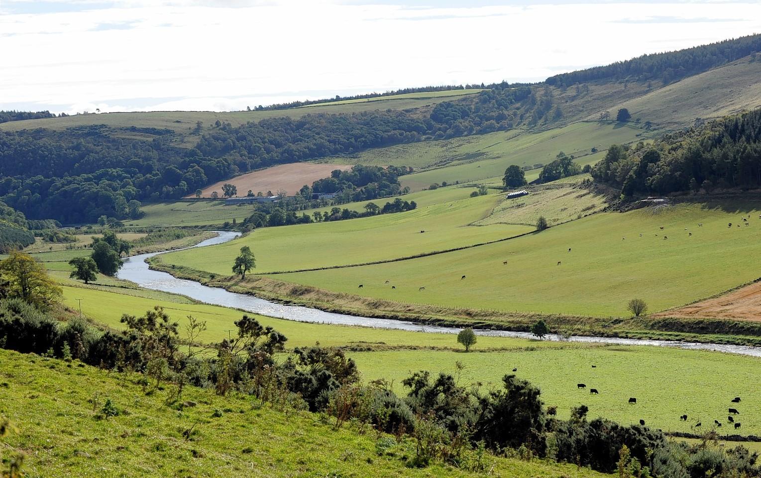 Land at Corniehaugh Farm