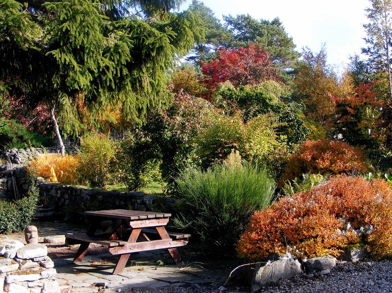 Drumguish Garden