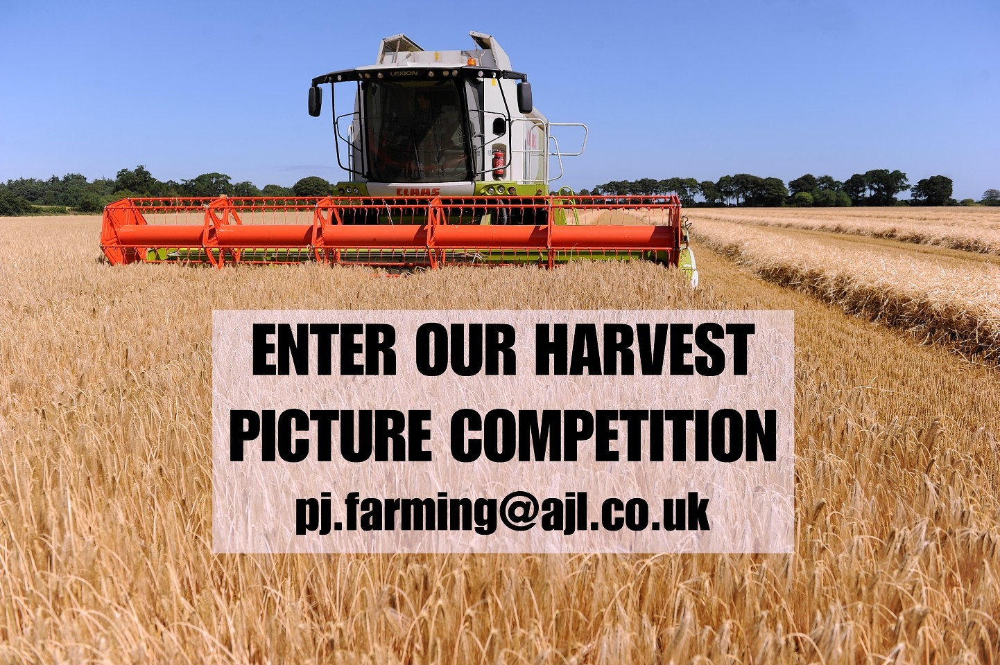 Send us in your harvest pictures
