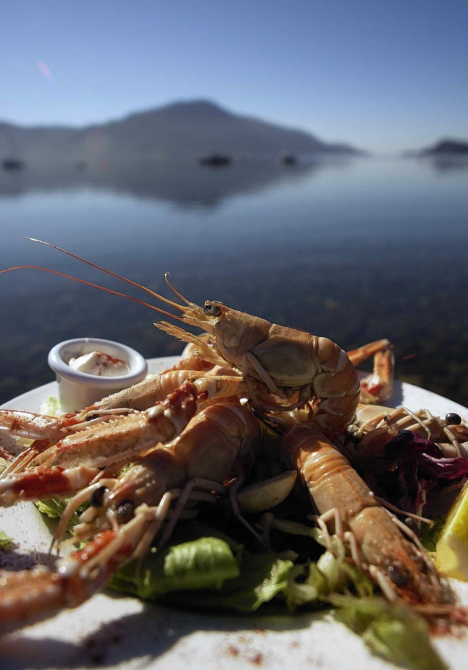 Scottish firms out in force at Boston seafood show | Press and Journal