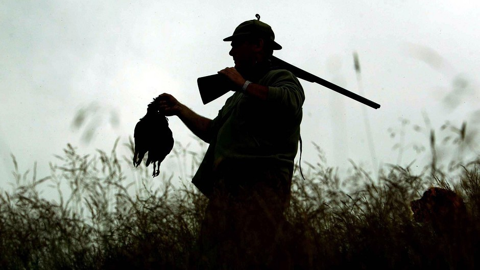 "Land reform will help stop game birds being ""blasted"" out of the sky, according to League Against Cruel Sports."