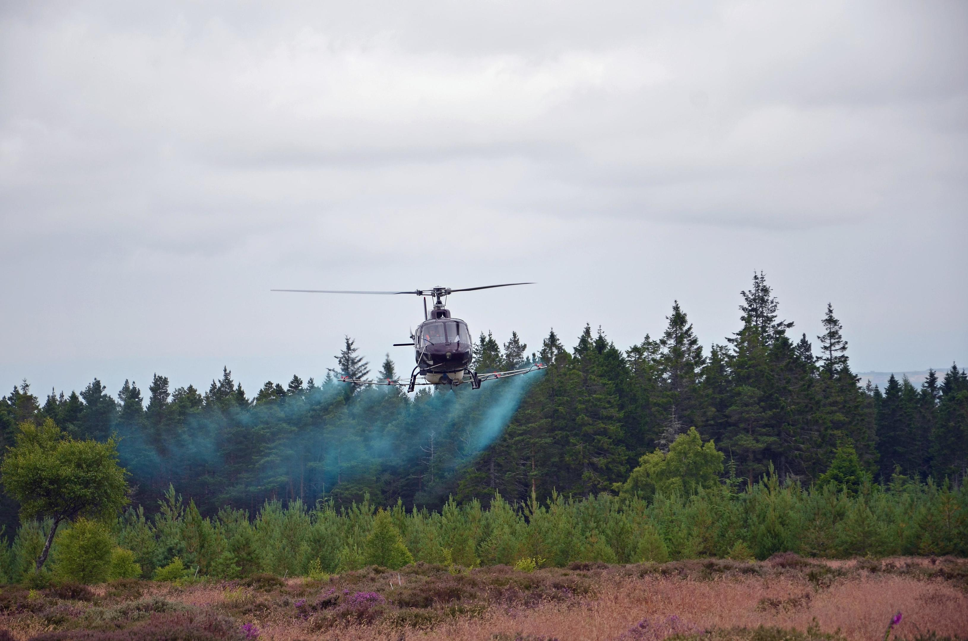 A helicopter spraying fungacide in a previous trial