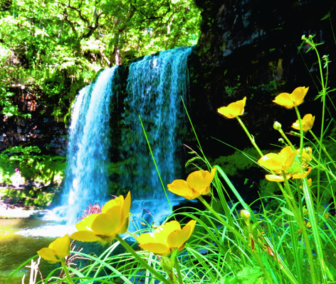 Sgwd Yr Eira waterfall