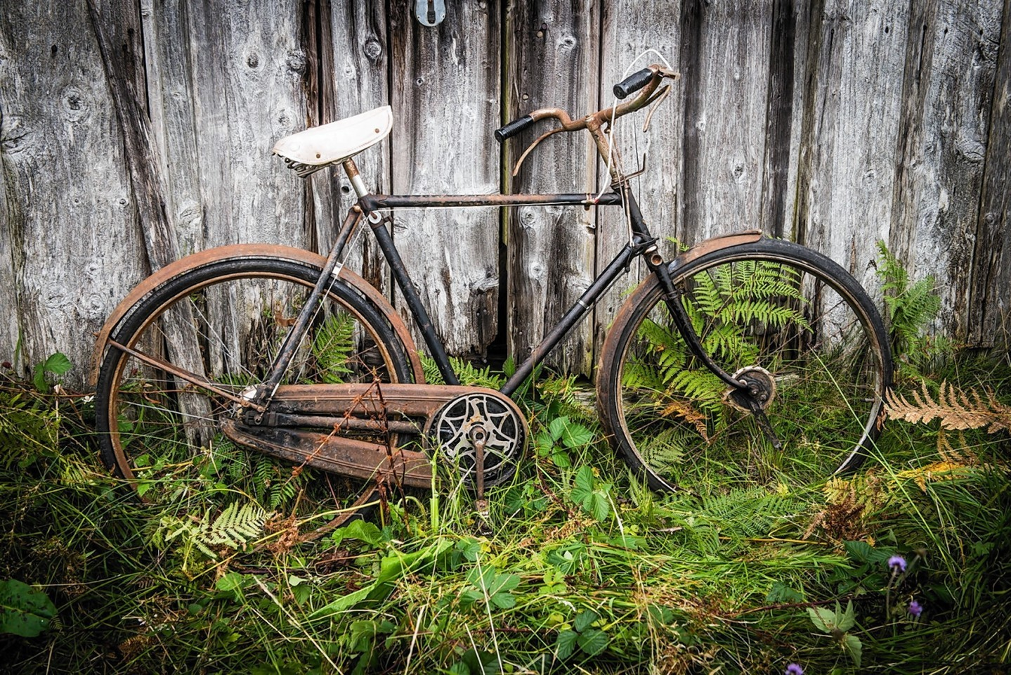 GLen Etive bike