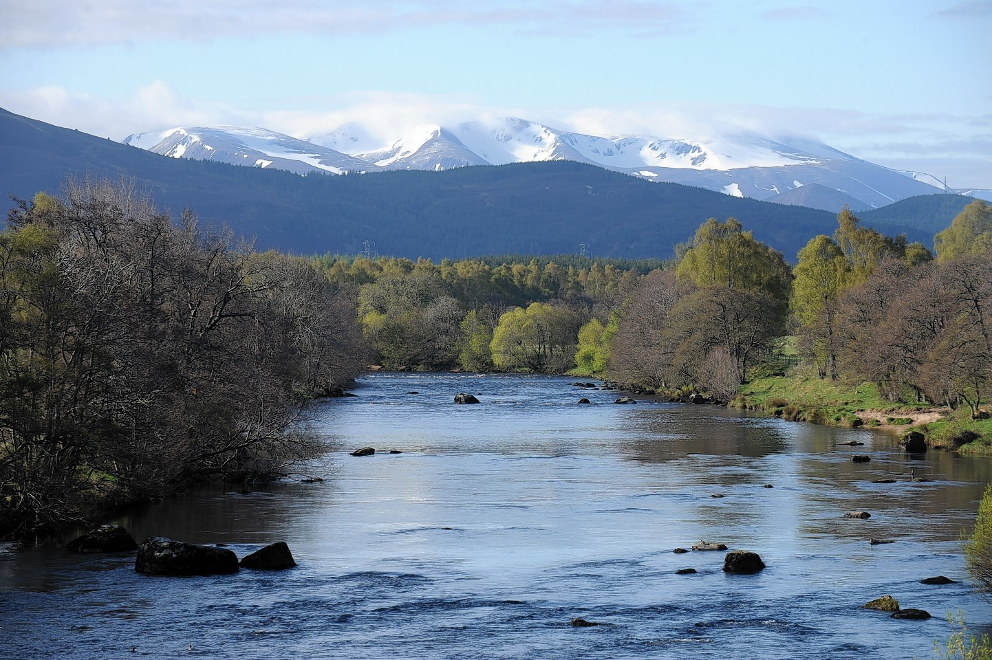 The angler was fishing in the River Spey
