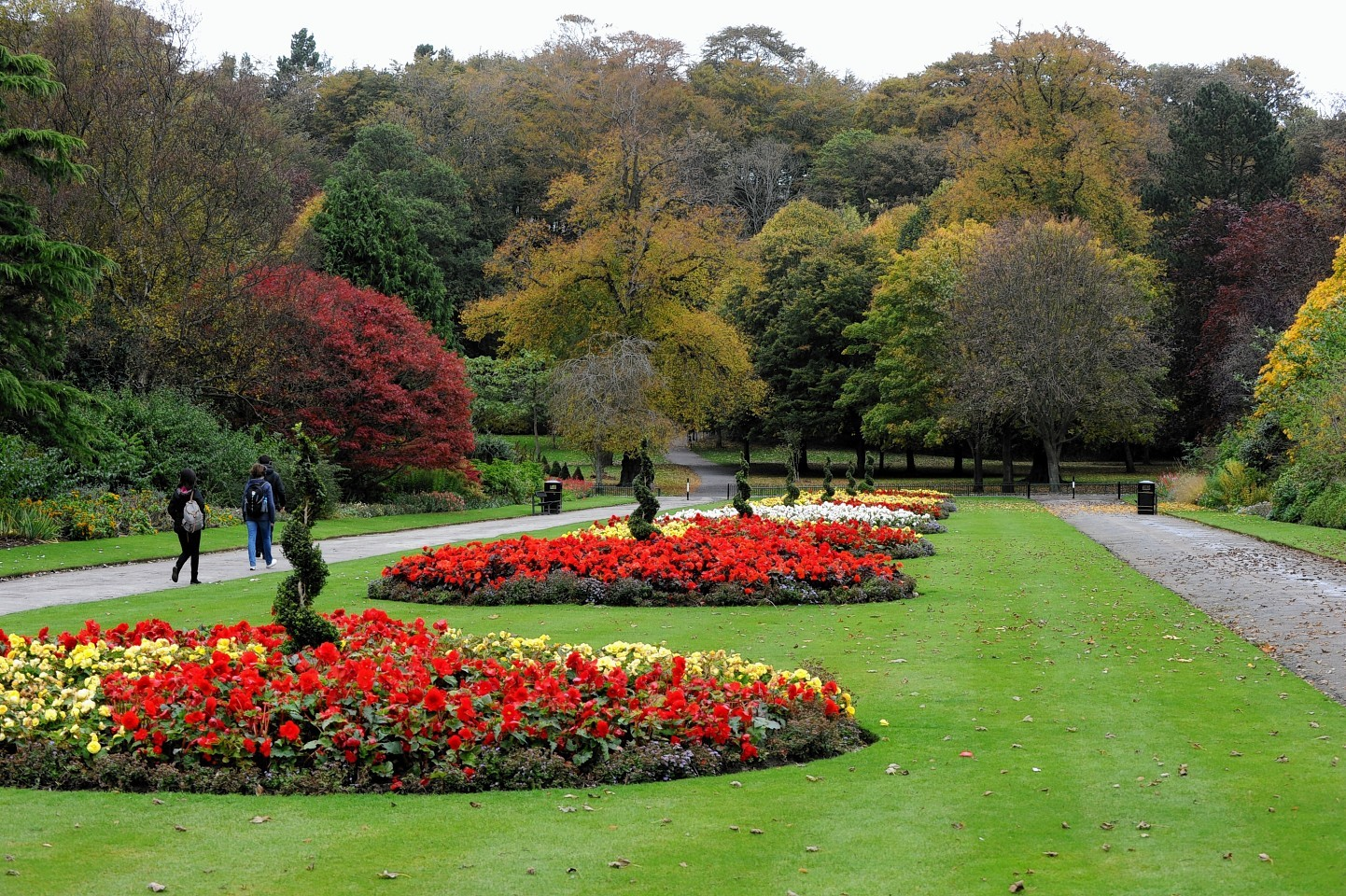 Aberdeen in Bloom