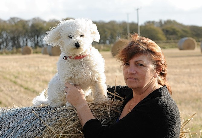 Jackie Dabell with her dog Mika, who have both been left heartbroken after beloved pooch Milo escaped.