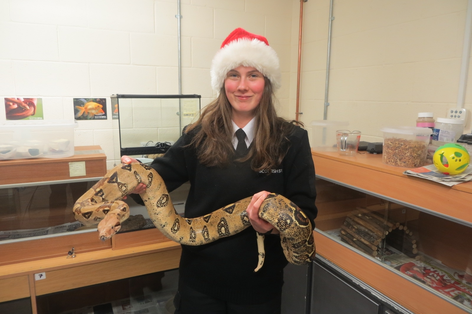 Care assistant Charlotte Muir with Marshall the red tailed boa