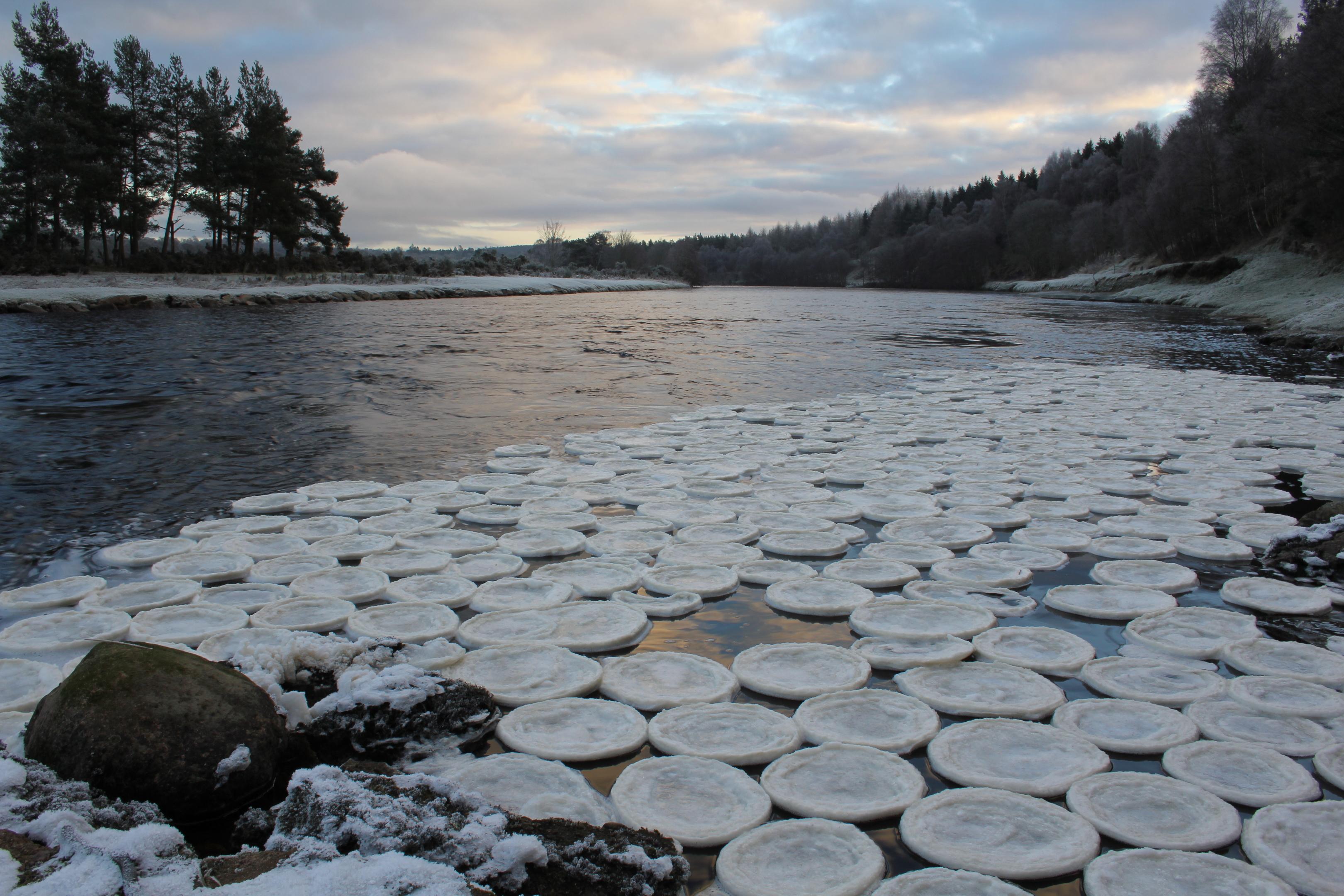 Ice pancakes at the Lummels Pool at Birse, near Aboyne