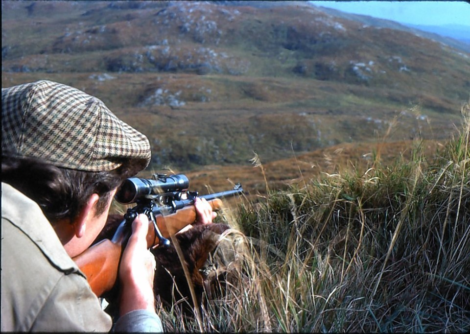 Commercial deer shooting will be available over the next two years on the Isle of Rum