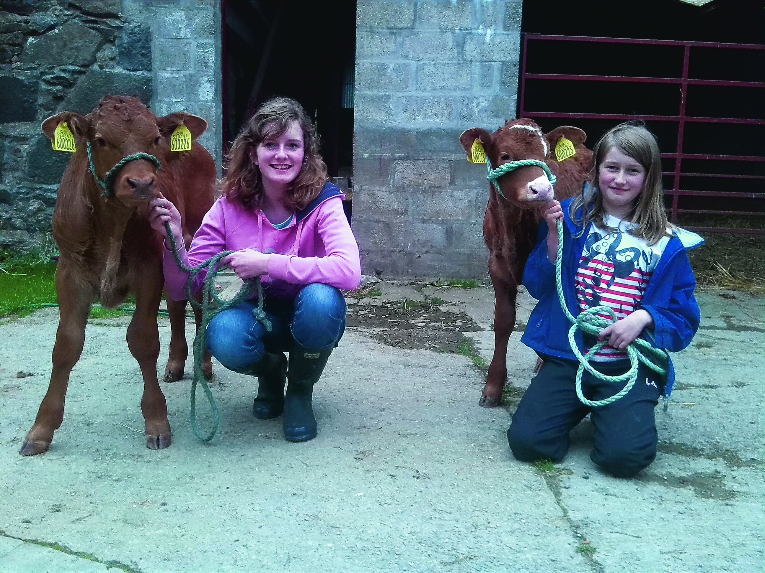 Here are Helen and Jane Cowie, who live on a farm near Kennethmont with their pet calves called Akie G (on the left) and Queenie (on the right) which are taken for a walk most nights.