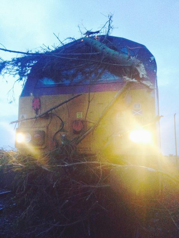 A train struck a tree between Huntly and Elgin. Pictures: Trees blocked an Aberdeen to Inverness train earlier this year