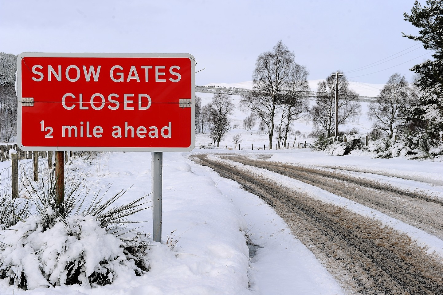 Roads closed as snow falls