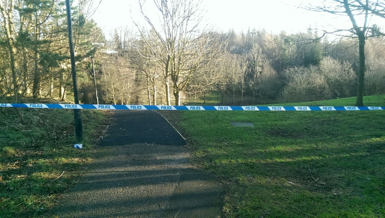 Police have taped off the woodland area around the scene