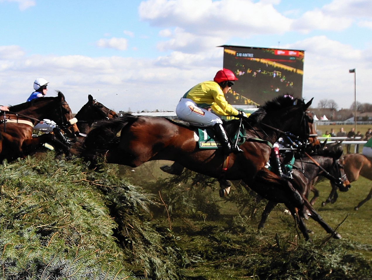 favourite grand national