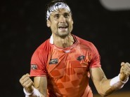 David Ferrer emerged victorious in Brazil (AP)