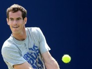 Andy Murray has been urged to keep his cool