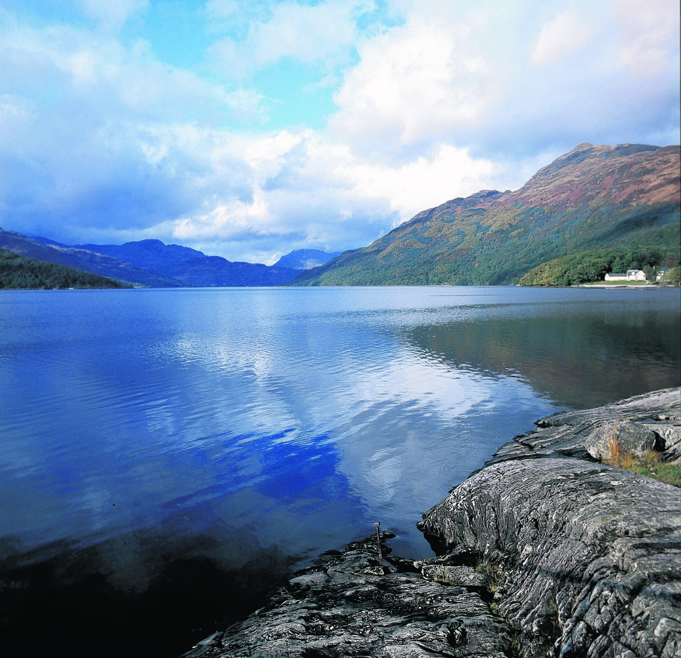 Looking along the banks of Loch Lomond. Photo: Scottish Viewpoint/VisitScotland