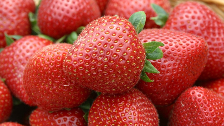 Profits and turnover were up at the soft fruit firm