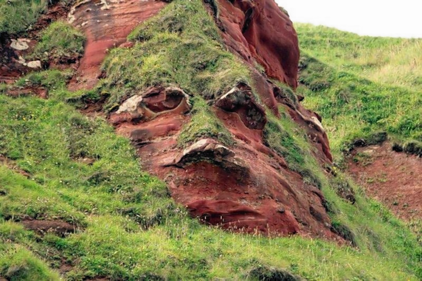 Can you see Alex Salmond's face in the cliff?