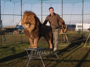 The only remaining lion tamer in Britain, Thomas Chipperfield, keeps two lions and three tigers in cages on a croft in Fraserburgh
