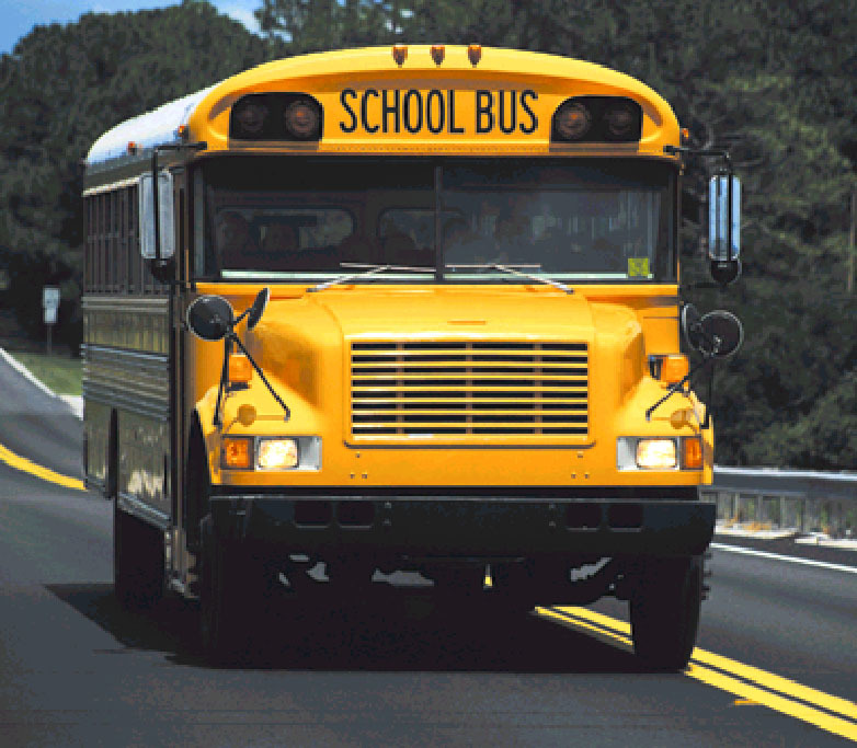 Seat belts could be fitted to all council school buses under the legislation.