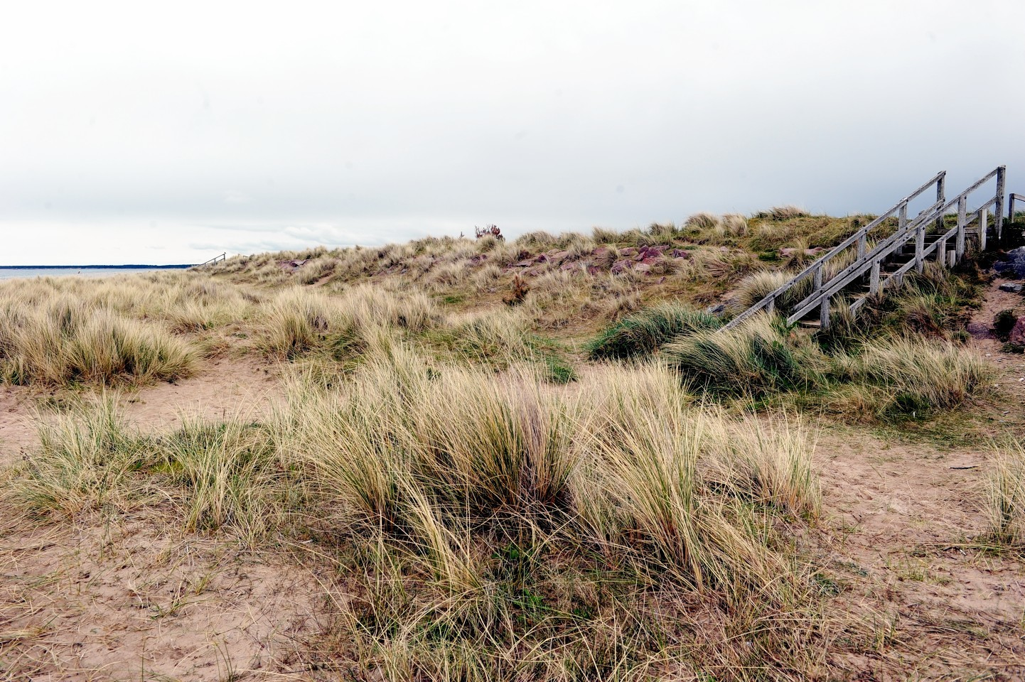 The foreshore at North Beach, Findhorn, where a planning application has been submitted to Moray Council for 30 beach huts. Picture by Gordon Lennox