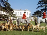 Fox hunting with dogs was banned in Scotland in 2002, with the Protection of Wild Mammals (Scotland) Act stating that a person who deliberately hunts a wild mammal with a dog is committing an offence
