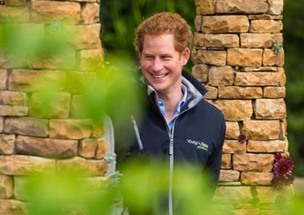 Prince Harry visits the Chelsea Flower Show