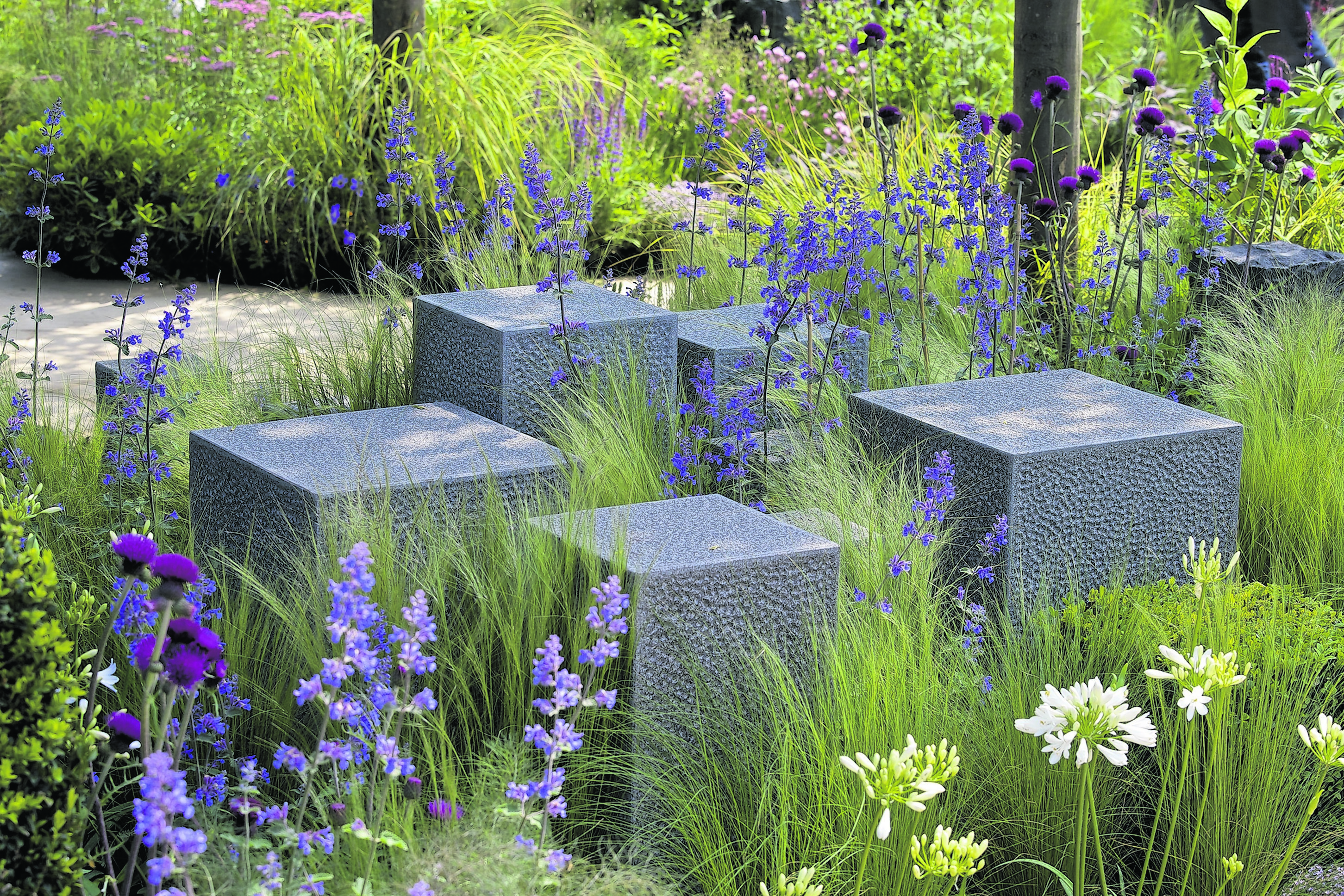 The Hope on the Horizon garden, sponsored by David Brownlow and designed by Matt Keightley, at the RHS Chelsea Flower Show 2014.