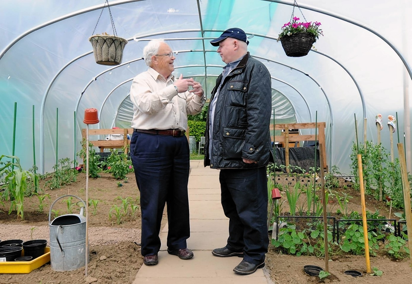 The opening of the Inverurie and district Mens Shed Polytunnel, Harlaw Road, Inverurie. In the picture Beechgrove's Jim McColl, left with Archie Peebles, trustee chairman in the polytunnel. Picture by JIM IRVINE