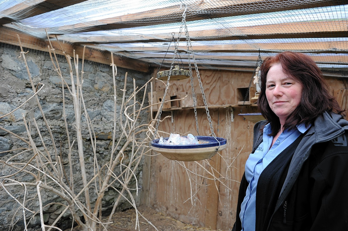 Jenny Smith in the aviary in her garden at Dufftown, that the rats got into, resulting in her Rosetta parrot escaping. Picture by Gordon Lennox