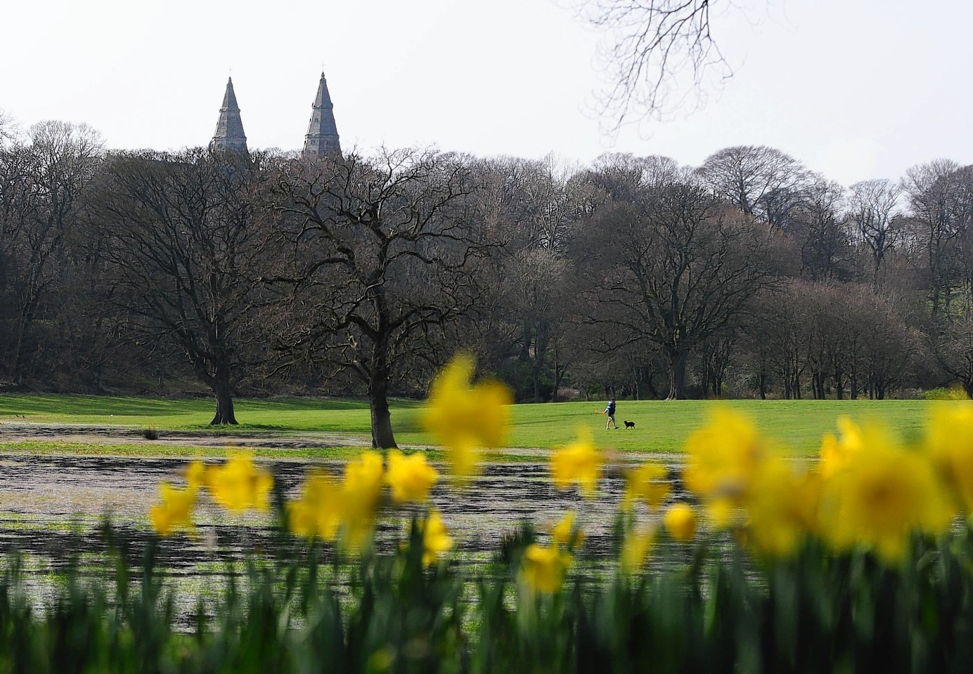 the woman was robbed in Seaton Park