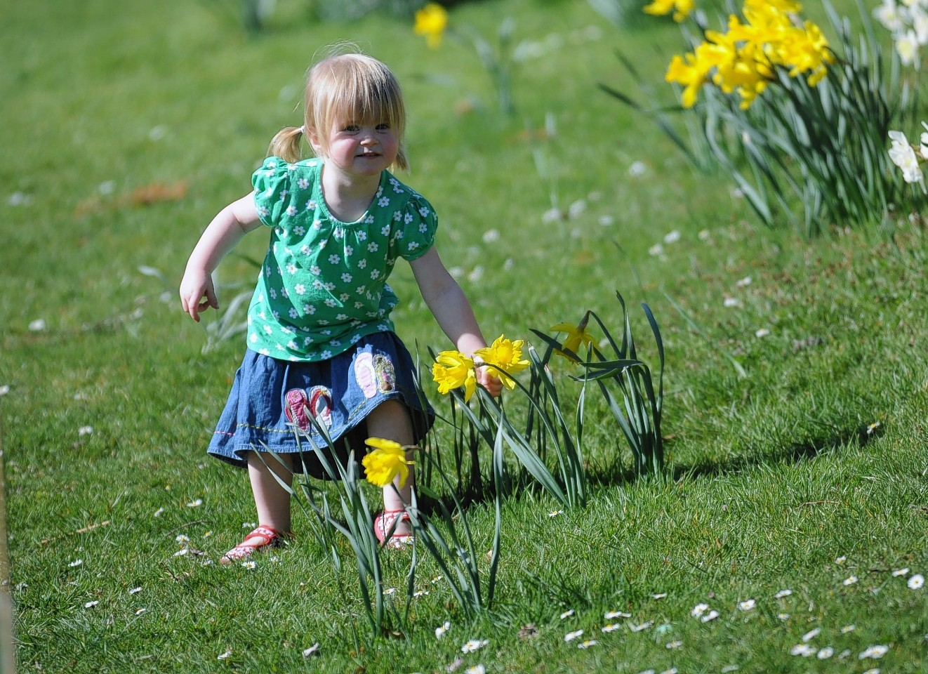 Little Charlotte Robertson, aged 2 years-old enjoying the weather in 2012