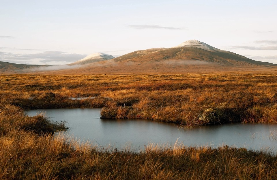 An initiative to restore peatlands is to get an extra £3million.