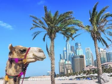 TRAVEL Dubai 093356