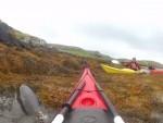Kayaker Chris Denehy set the dolphin free