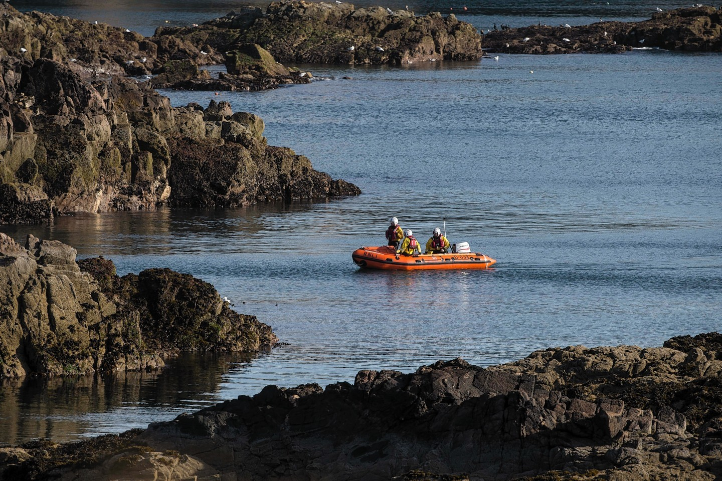 Search for man who fell overboard in the North Sea off the Aberdeen coast