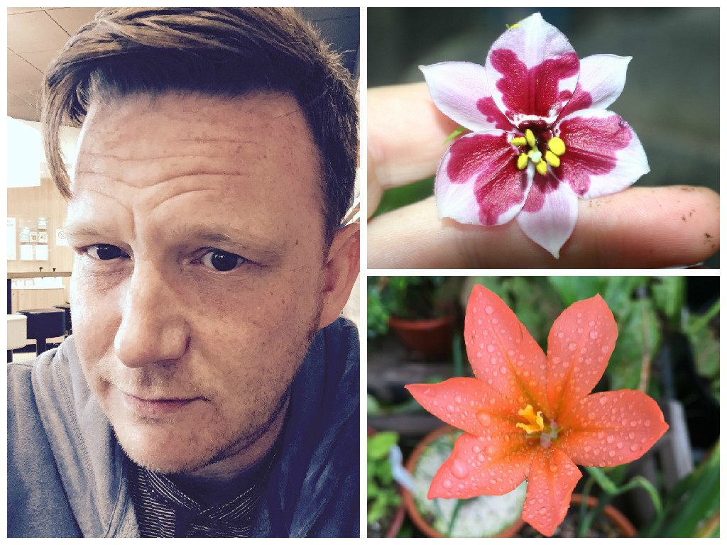 Chris Mackay's gardening blog