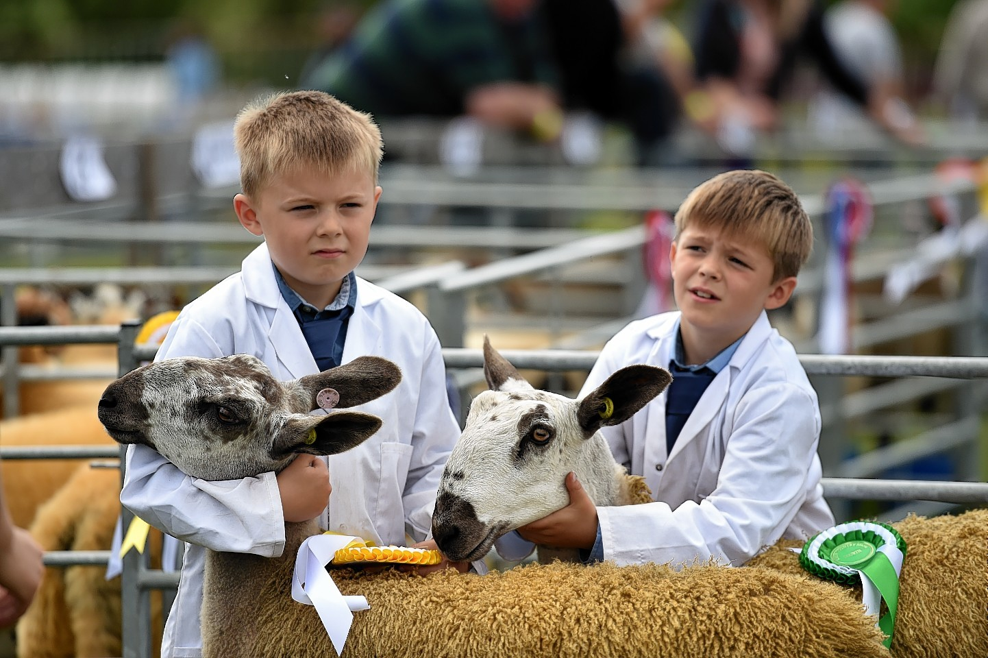 The Keith Show - Brothers, Gregor and Archie Milne from Kennieshillock Farm, Lhanbryde