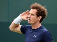Andy Murray, pictured, had enough energy left to beat Grigor Dimitrov after three hours of play