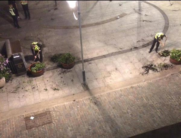 Police sweep up the plants in Drummers Corner