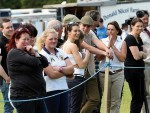 Spectators watching the horse judging at the Turriff Show. Picture by Kevin Emslie