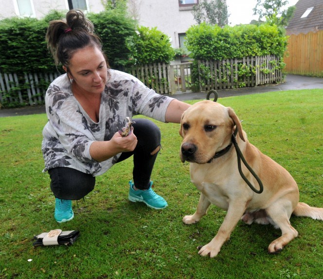 Amber Turner with Bolt the Labrador