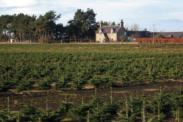 Maviston Farm near Nairn is up for sale