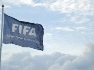 FIFA's executive committee is being urged to discuss postponing the presidential election at an emergency meeting