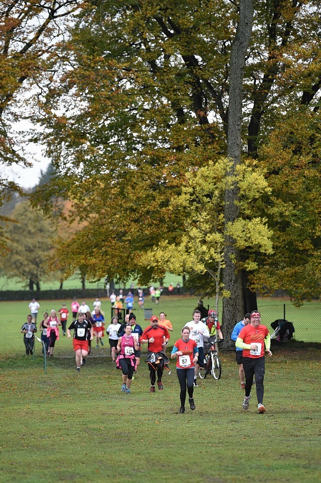 The runners make their way along the route in 2015. Picture by Colin Rennie
