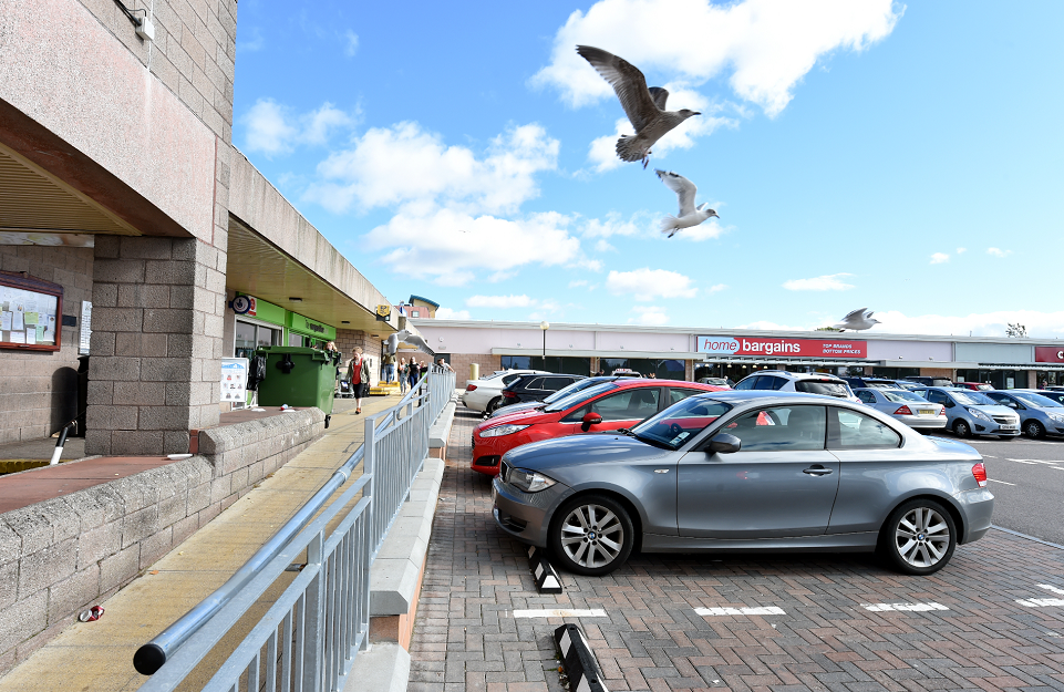 Plans have been put forward to deter problem gulls with drones