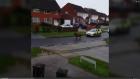 Police chase Shetland Pony through housing estate